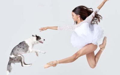 Dancers Love Dogs: A Delightful Night