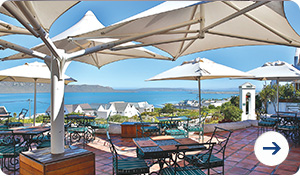 Holiday Special Camps Bay